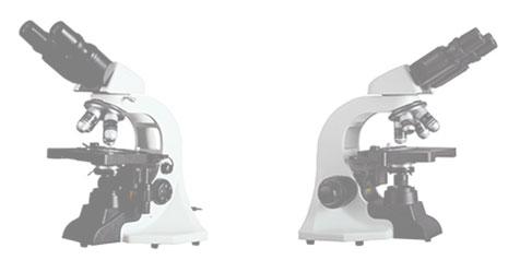 BM1000生物显微镜带CR-500成像系统