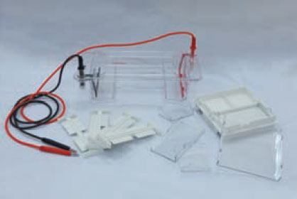 DYCP-31DN琼脂糖水平电泳仪