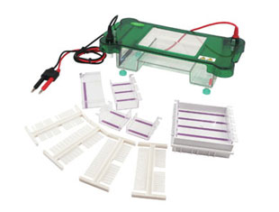 JY-SPCT型模具水平電泳槽