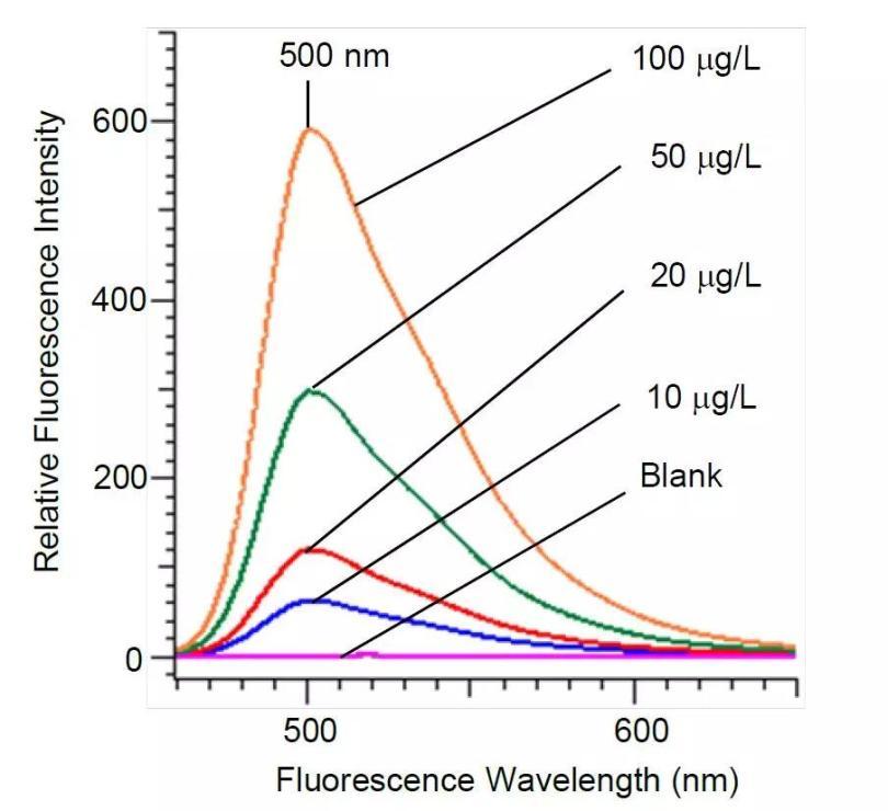 不同浓度的香豆素6的荧光光谱.jpg