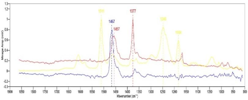 全新亚微米红外&拉曼同步测量关键技术助力多层薄膜内部组成分析