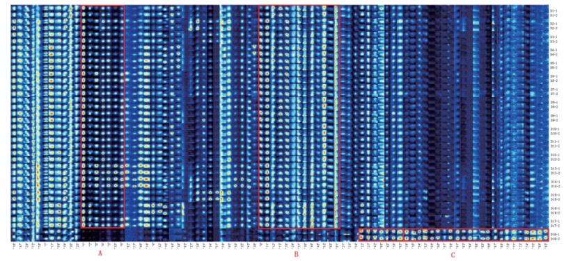 图3.不同产地稻花香稻米的挥发性有机物指纹图谱.png