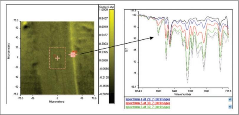 图7. 第六主成分的得分图像.png