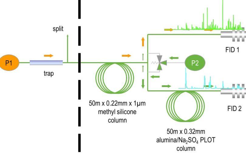 采用Swafer中心切割、双柱双FID检测的双通道分析系统分离高低碳数组分.jpg