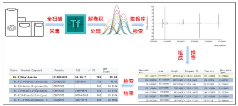 实验流程.png