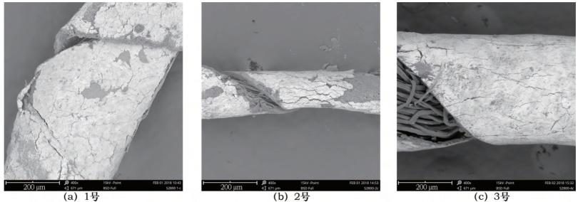 图4 三种金属线的扫描电镜图片.png