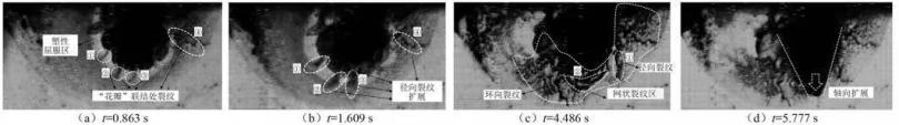 图3  第I阶段水锤压缩区域破碎孔洞演进及裂纹扩展中后期.jpg