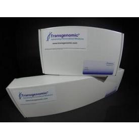 Amino Sep Na+ AA-911 氨基酸分析柱-耐水型
