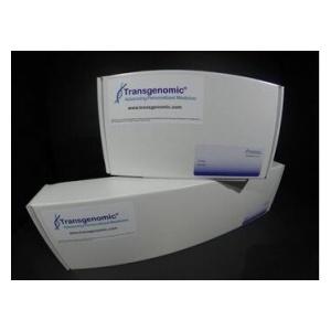 Amino Sep Na+ AA-511 氨基酸分析柱-高速