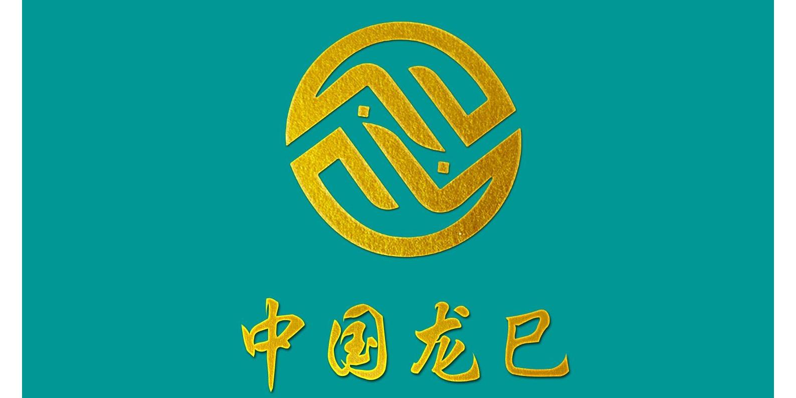 上海龍巳智能科技有限公司