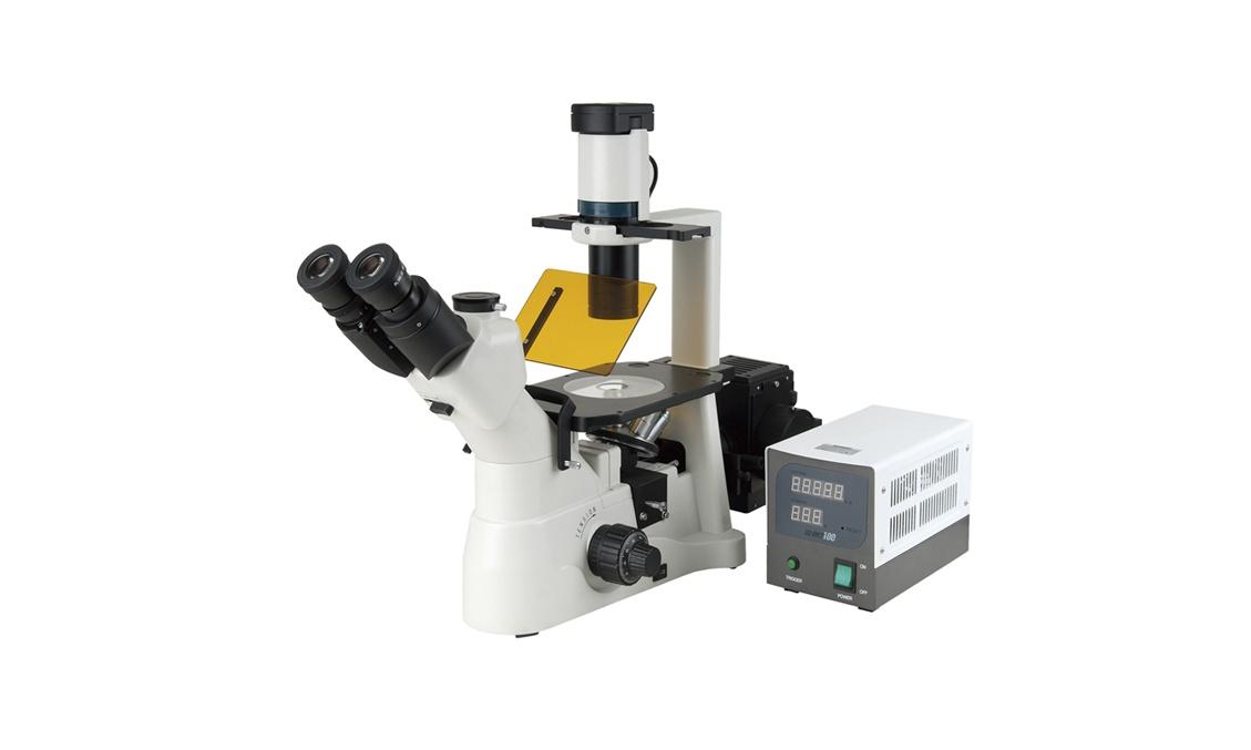 武汉理工大学荧光显微镜等成交公告