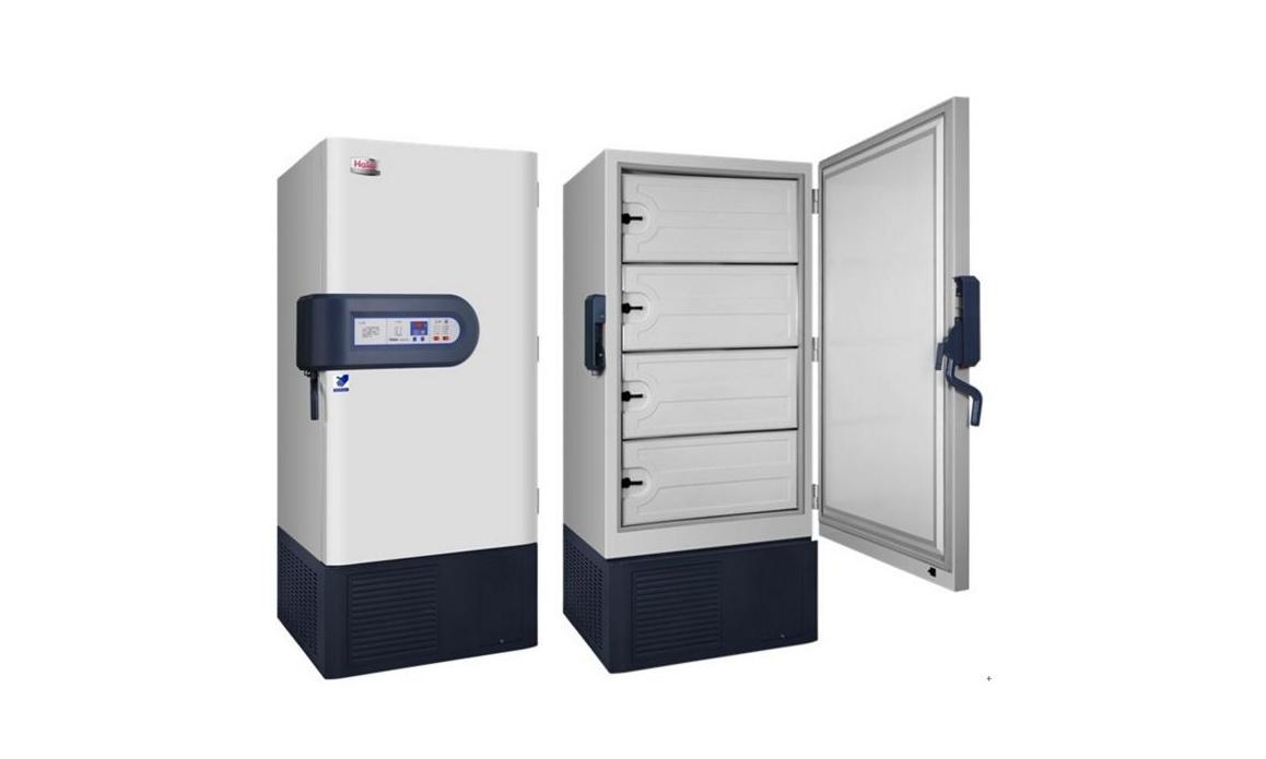 体育医院低温冰箱等招标公告