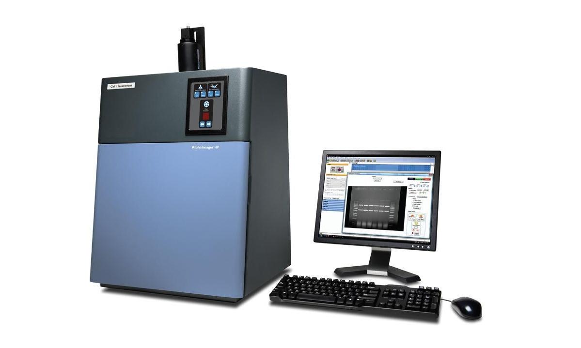 内蒙古大学化学发光凝胶成像仪等仪器设备采购项目招标