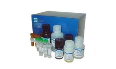 安徽省农业科学院畜牧兽医研究RNA提取试剂盒等试剂耗材采购招标