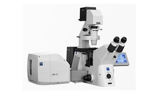 北京大学分析测试中心激光共聚焦扫描多维成像系统采购项目招标