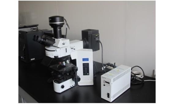 河南科技大学食品学科提升设备项目公开招标公告