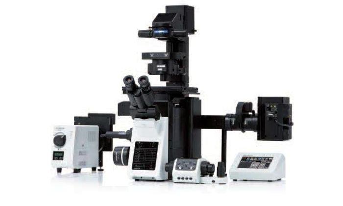 邢台医学高等专科学校倒置显微镜等仪器设备采购项目招标