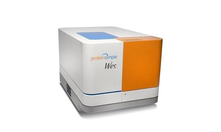 全自动蛋白表达荧光分析系统招标公告