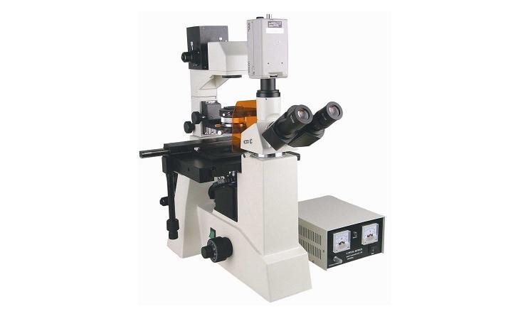 复旦大学双转盘双相机共聚焦显微镜招标公告