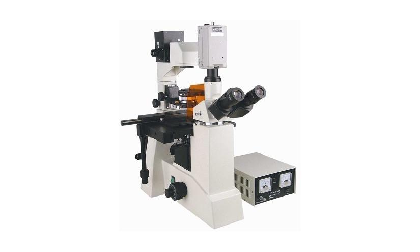 广西师范大学双光子激光共聚焦显微镜采购项目公开招标