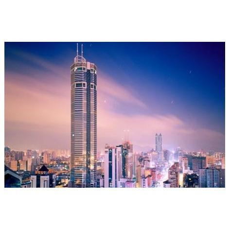 深圳海关工业品检测技术中心热重分析仪等仪器设备采购项目招标